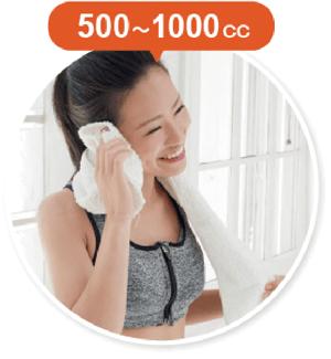 500〜1000cc