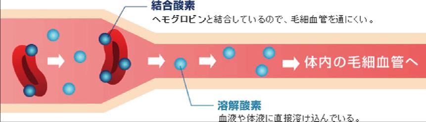 結合酸素:ヘモグロビンと結合しているので、毛細血管を通りにくい 溶解酸素:血液や体液に直接溶け込んでいる